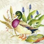 Салфетка за декупаж Splendid Duck