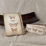 Картички Пеперуди