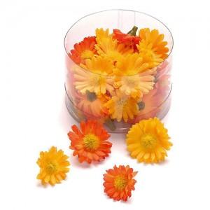 Маргаритки - оранжеви 40 бр.